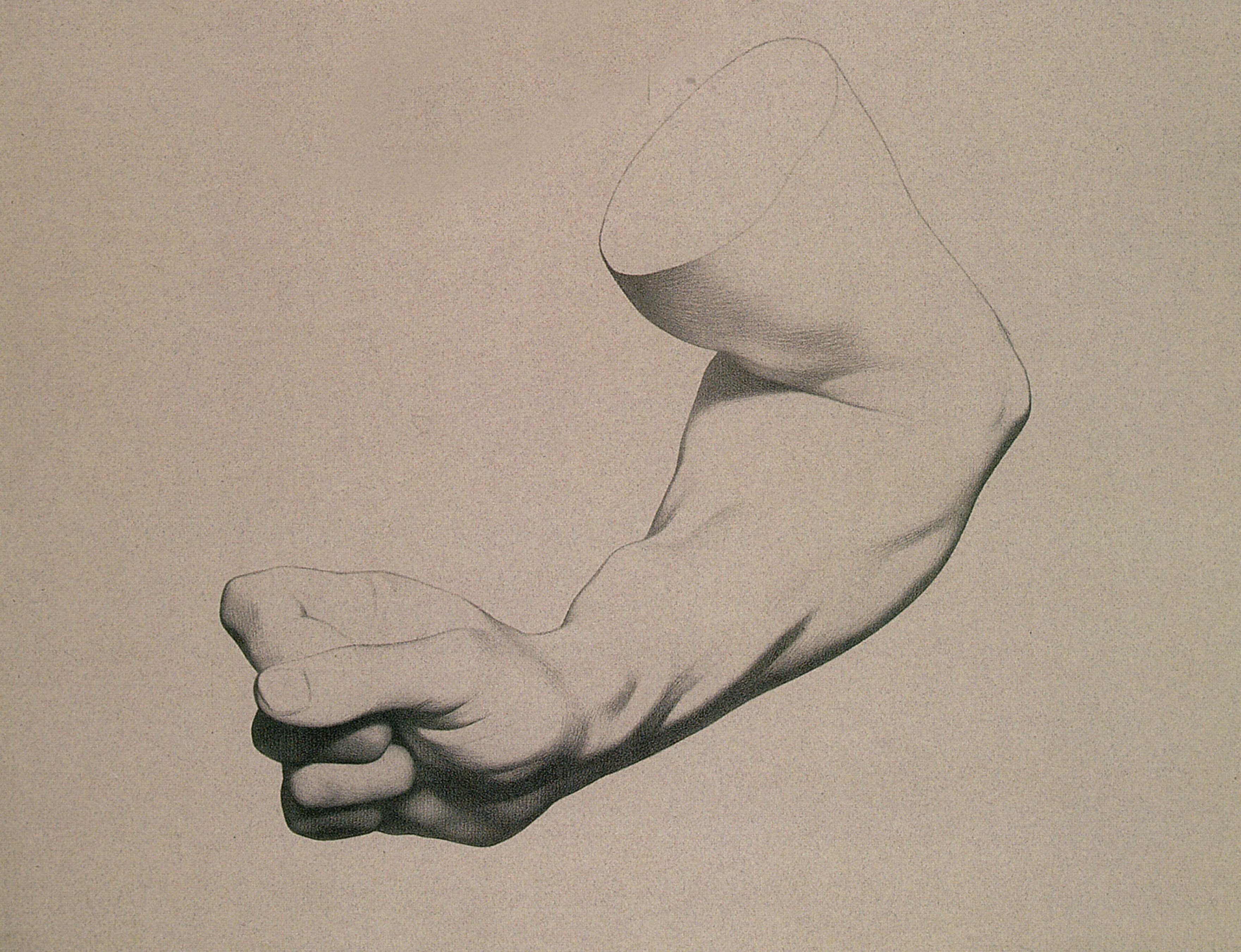 forearm1